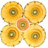 Isolerade skivade frukter. Kiwi ananas, apelsin, grapefrukt Royaltyfria Foton