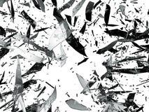 Isolerade splittrade eller Splitted exponeringsglasstycken Royaltyfria Bilder