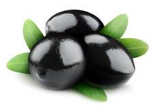 Isolerade svarta oliv arkivfoton