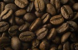 isolerade täta kaffekorn för bakgrund fotoet upp white Fotografering för Bildbyråer