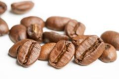 isolerade täta kaffekorn för bakgrund fotoet upp white Arkivfoton
