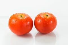 isolerade tomater två Royaltyfria Foton
