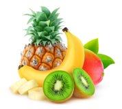 Isolerade tropiska frukter Arkivfoton