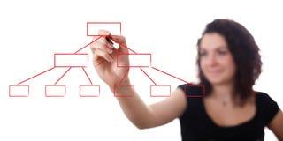 isolerade vita kvinnor för diagramteckning Fotografering för Bildbyråer