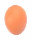 isolerat ägg royaltyfri bild