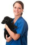 isolerat älsklings- veterinär- för assistenthund holding Royaltyfria Foton