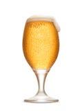 Isolerat ölexponeringsglas med skum och friskhet bubblar Royaltyfria Foton