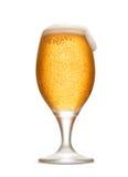 Isolerat ölexponeringsglas med skum och friskhet bubblar Royaltyfri Fotografi