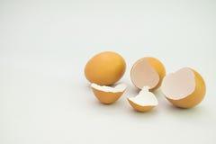 isolerat broken ägg royaltyfria bilder