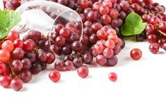 Isolerat Champagne Grapes och vinexponeringsglas Arkivbild