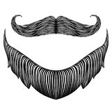 Isolerat detaljerat skägg vektor illustrationer