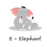 Isolerat djurt alfabet för ungarna, E för elefant Arkivbild