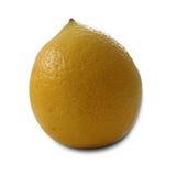 Isolerat en organisk citron Royaltyfri Bild