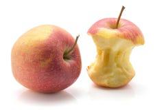 Isolerat Evelina äpple arkivbild