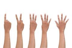Isolerat finger för en till fem räkning Royaltyfri Fotografi