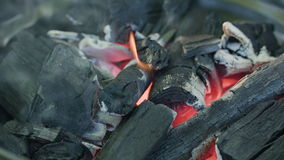 isolerat grillfestgaller Varma kol- och bränningflammor arkivfilmer