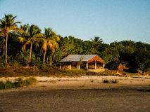 Isolerat i Brasilien Fotografering för Bildbyråer