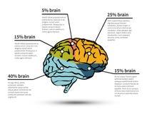 Isolerat infographic för Cerebration stock illustrationer