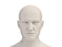 Isolerat mänskligt huvud arkivfoton