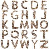 Isolerat mekaniskt alfabet i vit bakgrund royaltyfria foton
