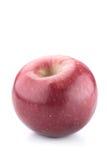 Isolerat moget rött äpple Arkivbild