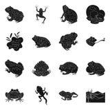 Isolerat objekt av fauna- och reptilsymbolen Samling av faunor och den anuran materielvektorillustrationen vektor illustrationer