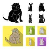 Isolerat objekt av husdjur- och sphynxlogoen Samlingen av husdjuret och gyckel lagerf?r vektorillustrationen vektor illustrationer
