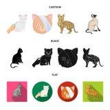 Isolerat objekt av husdjur- och sphynxsymbolen Samlingen av husdjuret och gyckel lagerf?r symbolet f?r reng?ringsduk royaltyfri illustrationer
