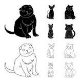 Isolerat objekt av husdjur- och sphynxsymbolen St?ll in av husdjur och gyckelmaterielsymbolet f?r reng?ringsduk stock illustrationer