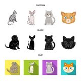 Isolerat objekt av husdjur- och sphynxsymbolet Samlingen av husdjuret och gyckel lagerf?r vektorillustrationen stock illustrationer
