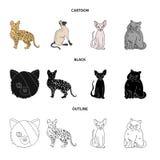 Isolerat objekt av husdjur- och sphynxsymbolet St?ll in av husdjur och illustration f?r gyckelmaterielvektor royaltyfri illustrationer