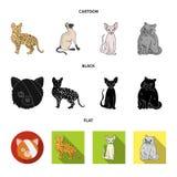 Isolerat objekt av husdjur- och sphynxtecknet St?ll in av husdjur och den roliga vektorsymbolen f?r materiel stock illustrationer