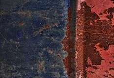 Isolerat på blå bakgrund Arkivbild