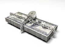 Isolerat på vita dollar för en bakgrundspacke stängde låset, begreppet av de säkra lagringsfonderna, 3d framför Royaltyfri Fotografi