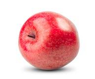 Isolerat rött äpple på vit bakgrund Nytt banta Arkivfoton