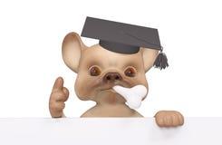 Isolerat roligt litet diplom för lock för avläggande av examen för tecken för valphund Arkivfoton