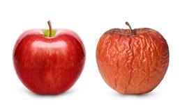 Isolerat rynkigt och nytt äpple Arkivbild