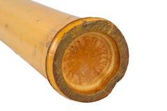 Isolerat Shaker Bamboo slagverk Arkivbild