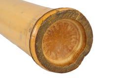 Isolerat Shaker Bamboo slagverk Royaltyfri Foto