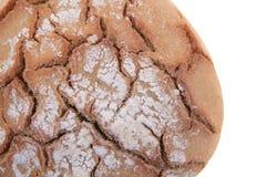 Isolerat tjeckiskt bröd Arkivfoto