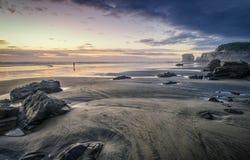 Isolering på MAori Bay Royaltyfri Foto