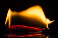 Isoli il fuoco sui peperoncini rossi rossi su terra nera Fotografie Stock Libere da Diritti