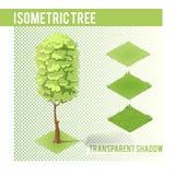 Isometric δέντρο 002 Στοκ Φωτογραφίες