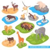 Isometric ζωικό σύνολο ζωολογικών κήπων Στοκ φωτογραφία με δικαίωμα ελεύθερης χρήσης