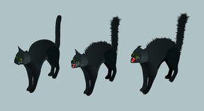 Isometric Black Cat. Set calm cat, meowing, hissing vector illustration. Royalty Free Stock Images