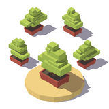 Isometric bonsai in a pot plant Stock Photo