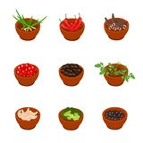 Isometric and cartoon style flavorful spices, condiments icon. Vector illustration. White background. Royalty Free Stock Photo