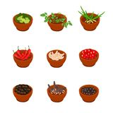Isometric and cartoon style flavorful spices, condiments icon. Vector illustration. White background. Stock Photos