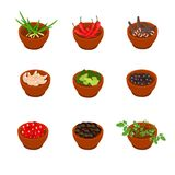 Isometric and cartoon style flavorful spices, condiments icon. Vector illustration. White background. Isometric and cartoon style flavorful spices and Stock Photography
