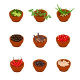 Isometric and cartoon style flavorful spices, condiments icon. Vector illustration. White background. Royalty Free Stock Photos